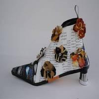 shoeboot400l.jpg