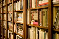 800px-Bookshelf.jpg