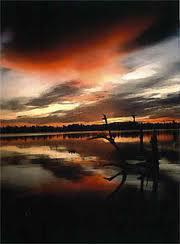 Thumbnail image for ribbon sunset Greg images.jpg