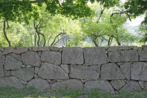 Stonington stone fence trees 72 dpi.jpg