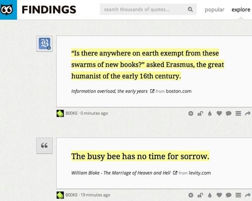 findings.jpg