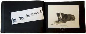 eureka-book-sf.jpg