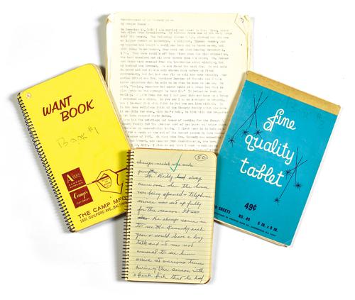 203 - Evelyn Marsh Jones Memoir.jpg