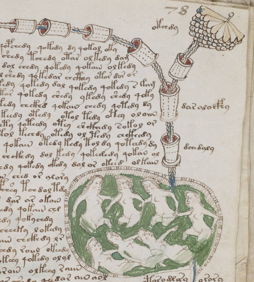 Voynich_manuscript_bathtub2_example_78r_cropped.jpg