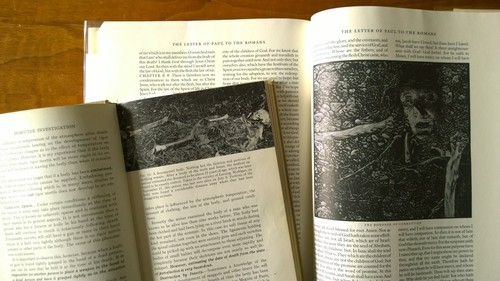 Bones_Homicide Investigation 1947_along side_Barry Moser Bible trade edition 1999.jpg