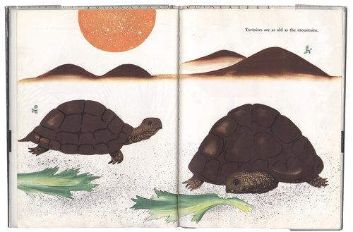 Bruno-Munari's-Zoo_02_WEB.jpg