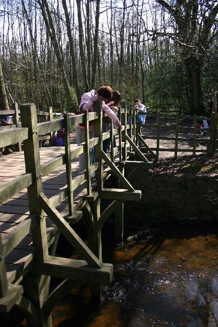 Pooh_sticks_bridge.jpg