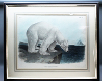 Lot139_Audubon_Polar_Bear.jpg