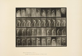 13-Muybridge copy.jpg